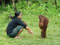 Affen sind einfach des beste!